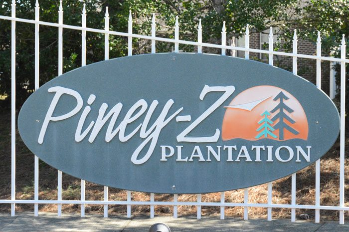 PineyZ-4